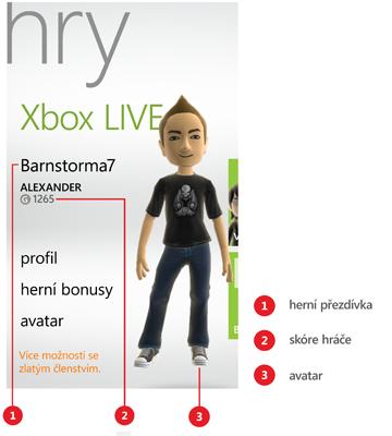 Obrázek profilu hráče v centru Hry