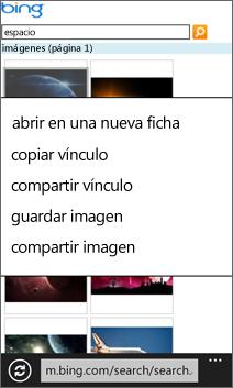 Almacenamiento de imágenes de la Web